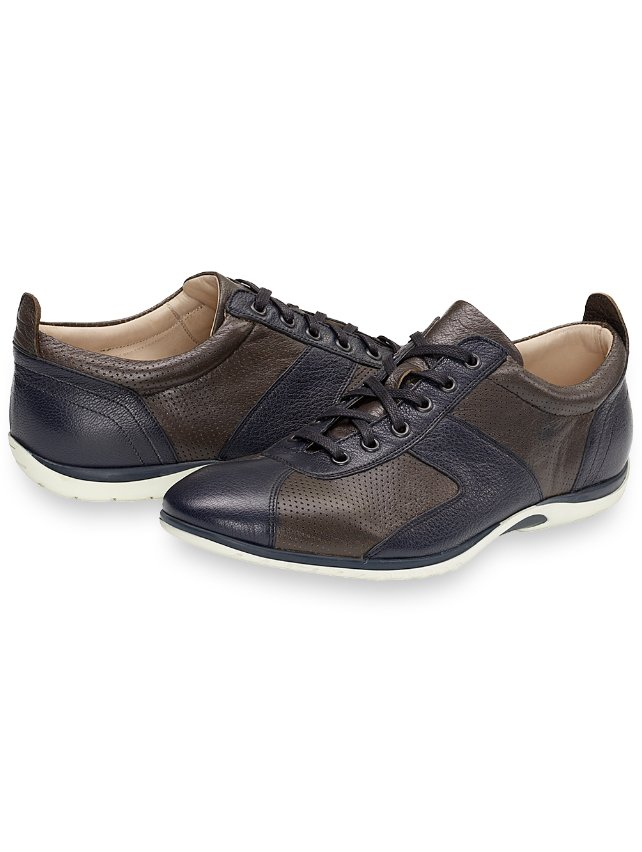 Newton Sneaker
