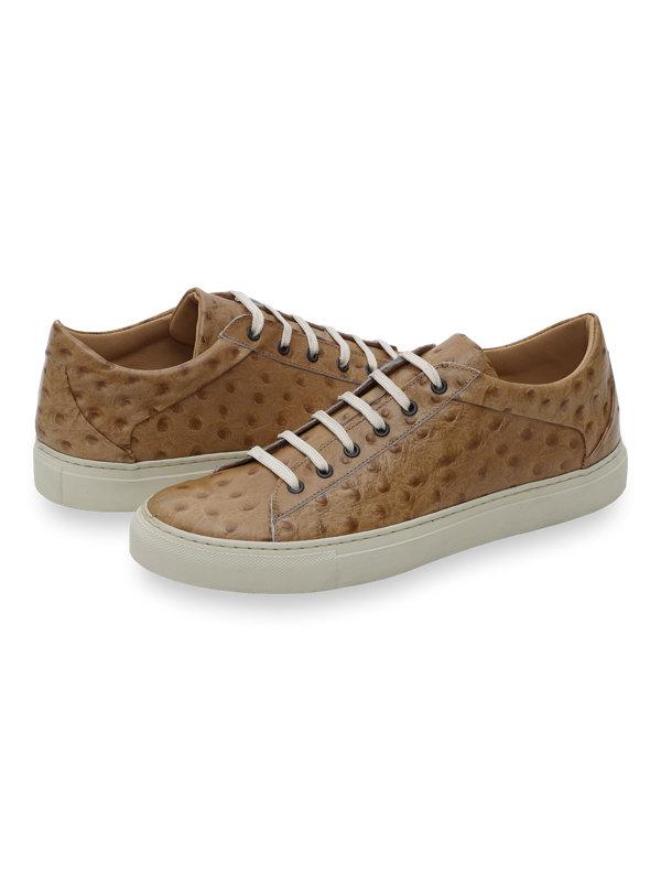 Warner Sneaker