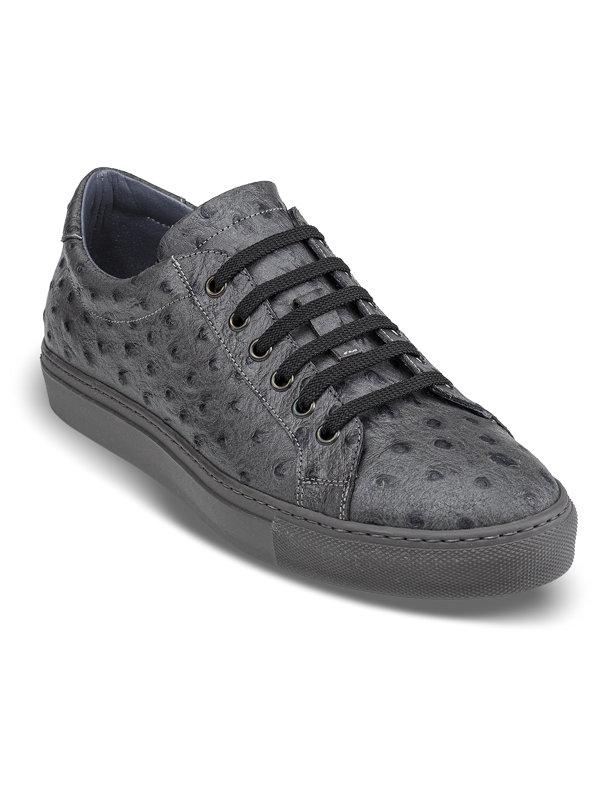 Colton Sneaker